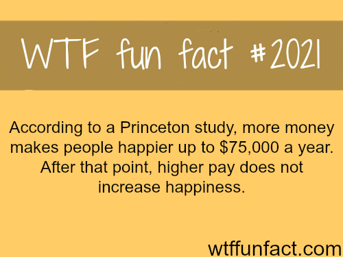 Can money make people happy? - WTF fun facts