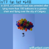 canadian man arrested after he tied 100 balloons