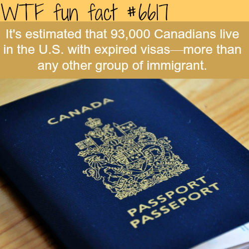 Canadians living in the USA with expired visas - WTF fun fact