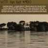 cannibal island wtf fun facts