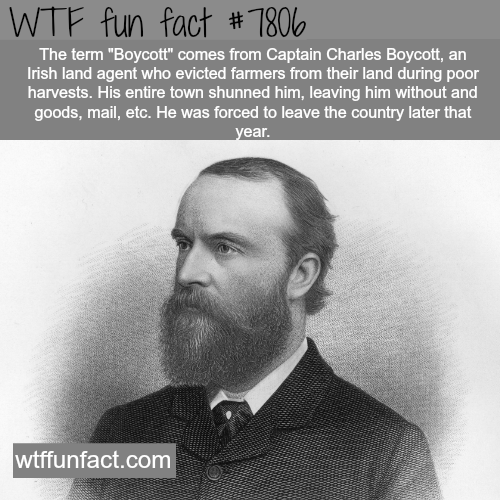 Captain Charles Boycott - WTF fun facts