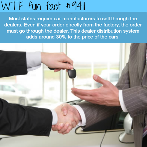 Car Dealers - WTF fun facts