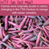 carrots were originally purple wtf fun facts