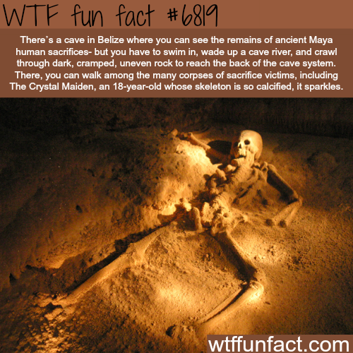 Cave in Belize full of ancient Mayan sacrifices - WTF fun fact