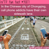 cell phone lanes for the texting addicts in china