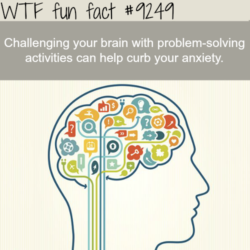 Challenging your brain - WTF fun facts