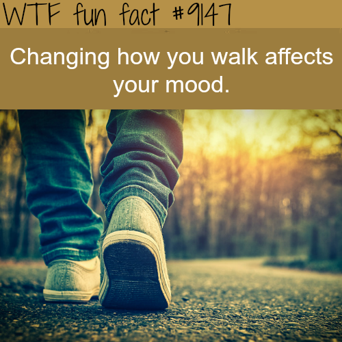 Changing how you walk affectsyour mood - WTF Fun Facts