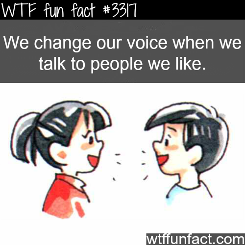 Changing voice when talking to people you like -  WTF fun facts