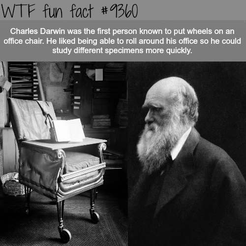 Charles Darwin - WTF fun facts