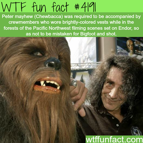 Chewbacca and bigfoot -  WTF fun facts