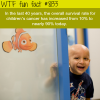 childrens cancer survival rate wtf fun facts