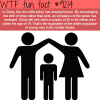 chinas one child policy wtf fun fact