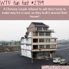 chinese couple refuse to sell their house