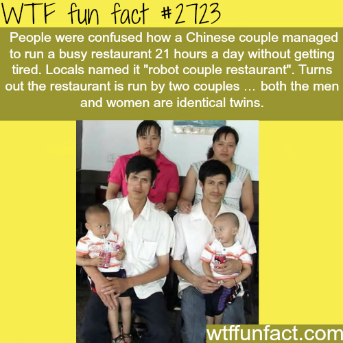 Chinese twins married a Chinese twins - WTF fun facts