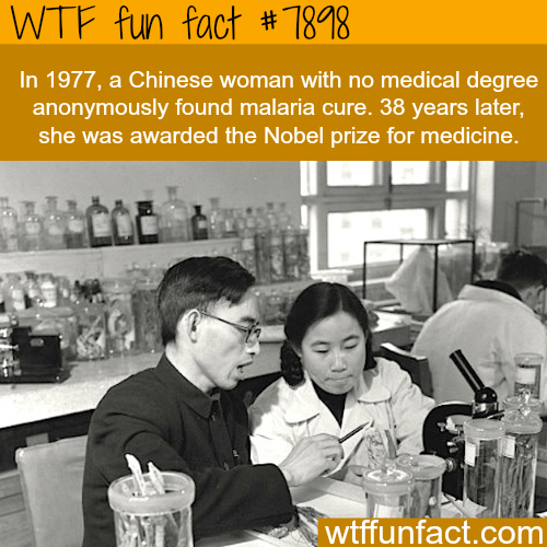 Chinese woman with no degree in medicine wins Nobel prize in medicine - WTF fun facts