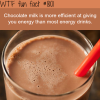 chocolate milk wtf fun facts