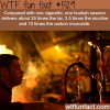 cigarette smoking vs hookah wtf fun facts