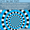 circles or spiral wtf fun fact