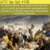 classical athens wtf fun facts