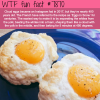 cloud eggs wtf fun facts