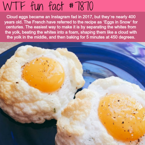 Cloud eggs - WTF fun facts