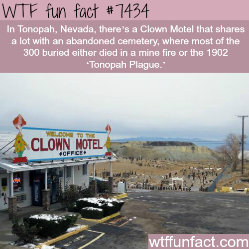 Clown Motel - Facts
