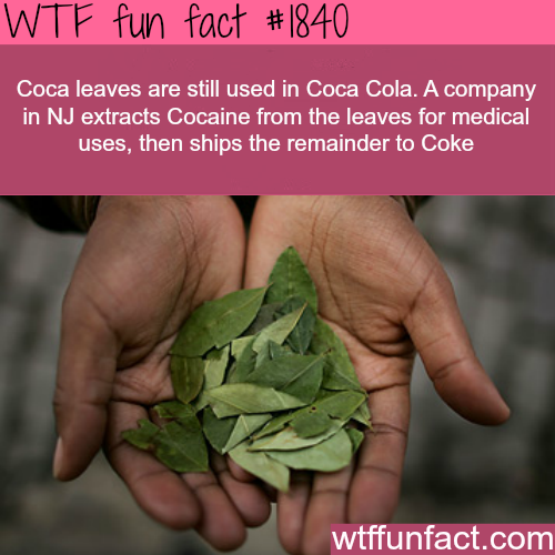 Coca leaves are still used by Coca Cola -WTF fun facts