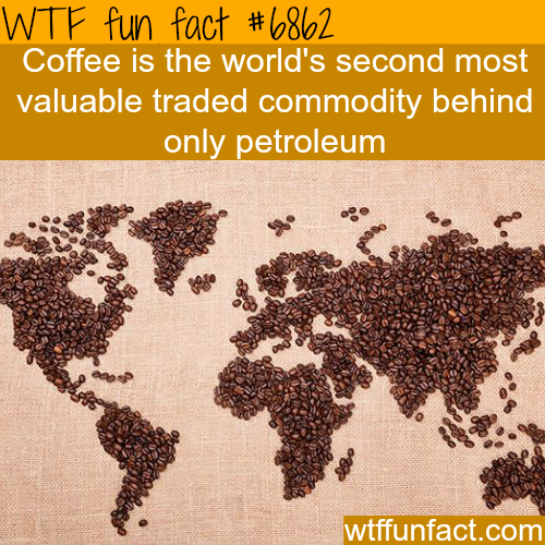 Coffee - WTF fun fact