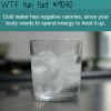 cold water can help you lose weight wtf fun