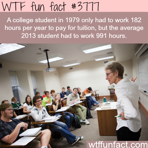 College student's debt - WTF fun facts