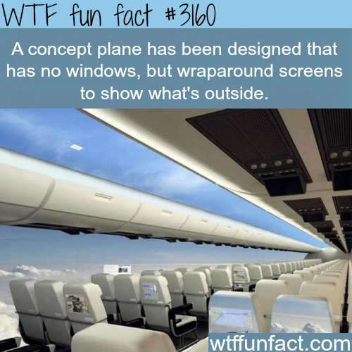 Concept Plane that will make you able to see the outside -WTF fun facts