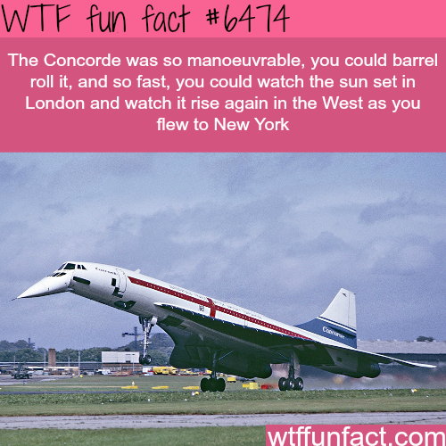 Concorde airplane - WTF fun facts
