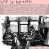 confidence man wtf fun facts