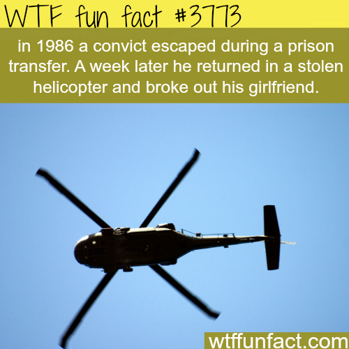 Convict uses helicopter to break out his girlfriend from prison - WTF fun facts