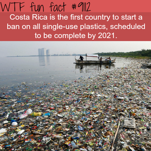 Costa Rica will ban all single-use plastics - WTF fun fact