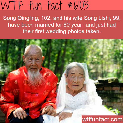 Couple take a wedding photograph after 80 years of marriage - WTF fun facts