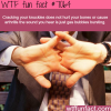cracking your knuckles wtf fun facts