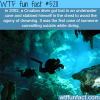croatian diver gets lost underwater wtf fun