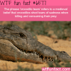 crocodile tears wtf fun facts