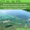 crystal clear water flathead lake montana