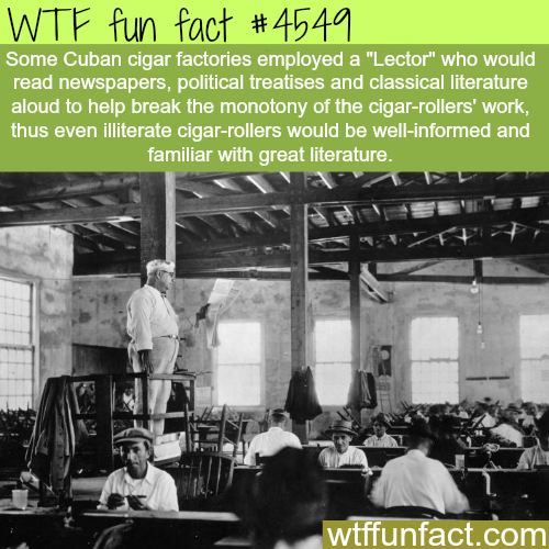 Cuban Cigar-rollers -   WTF fun facts