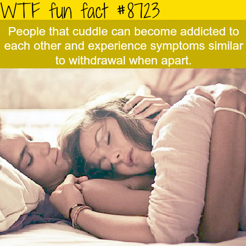 cuddling can be addicting - WTF fun facts