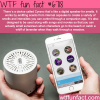 cyrano the digital speaker for smells wtf fun