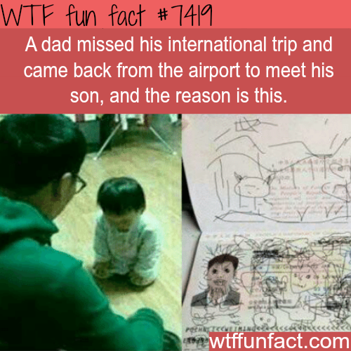 Dad misses his international flight… - FACTS