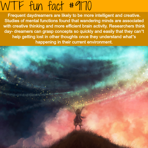 Daydreamers - WTF Fun Facts
