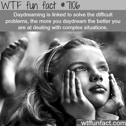 Daydreaming - WTF fun facts