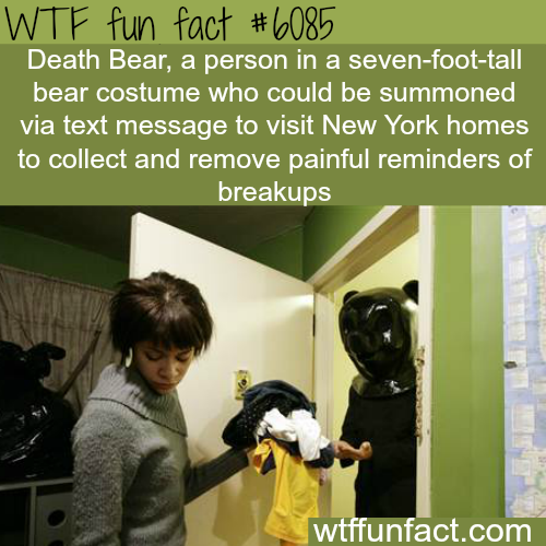 Death Bear - WTF fun facts
