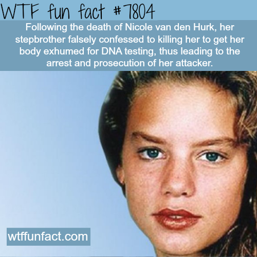 Death of Nicole van den Hurk - WTF fun facts
