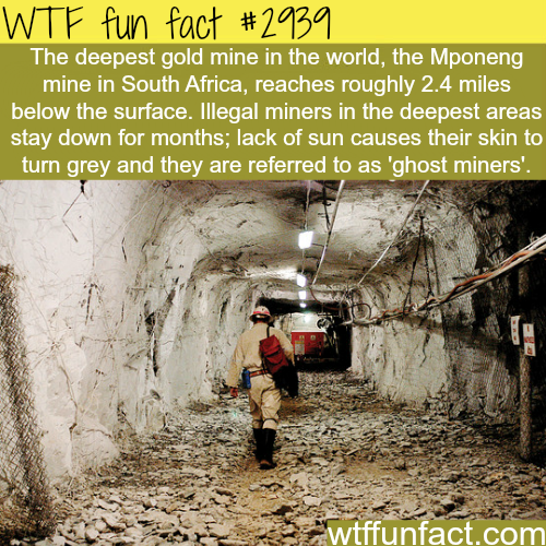 Deepest gold mine in the world -WTF fun facts