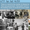 democide wtf fun fact